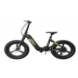 Bici elettrica Redwood X 250 Watt