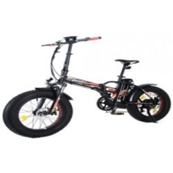 Bici elettrica Redwood 250 Watt