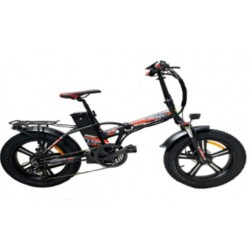 Bici elettrica Redwood Mag 250 Watt
